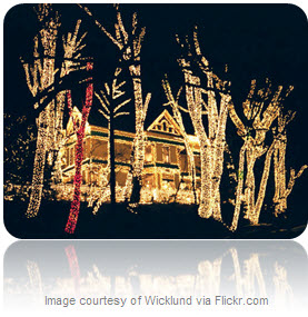 89814 cape arago hwy coos bay or 97420 24th annual holiday lights display opens on thanksgiving day and continues thru new years eve